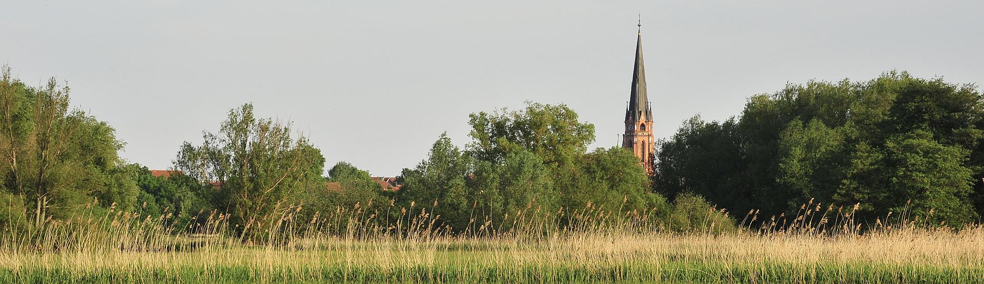 Bannerbild 3